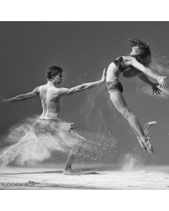 DANCE FLOOR GROUND CONTROL